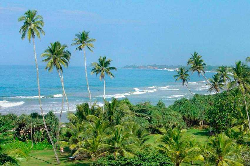 General information on Sri Lanka - when and where is it better to go, prices, connection